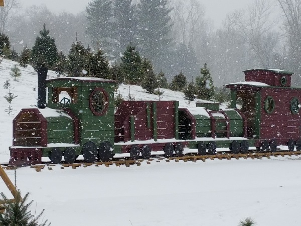 kleerview farms christmas trees train