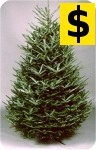 pricing on
