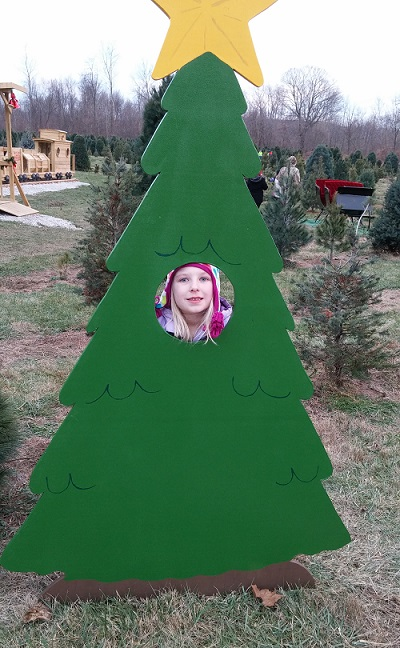 kleerview farm tree cutout photo