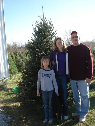 2011                       christmas tree winners